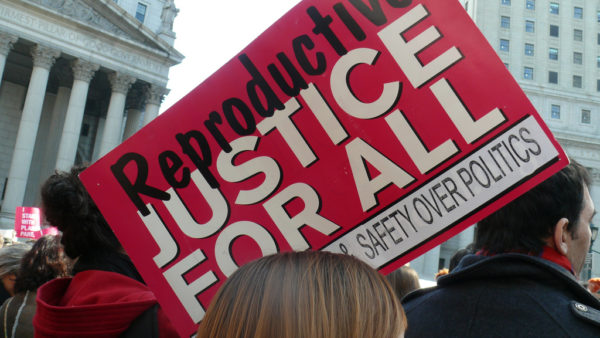 Reproductive Justice sign #freepurvi